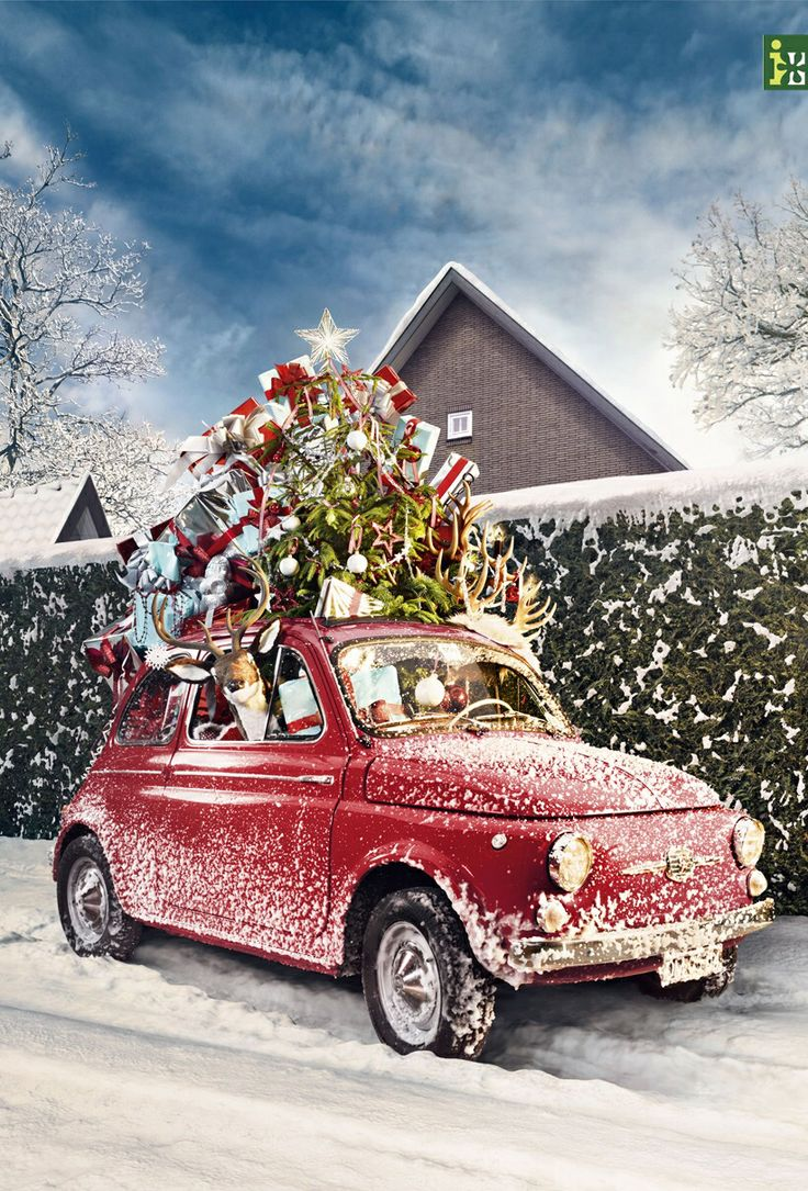 Christmas Car Decorations.Five Car Decorations That Will Make You Ready For Christmas