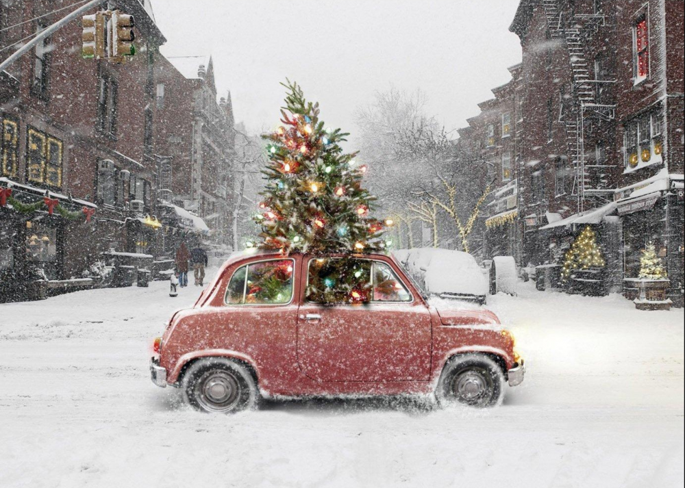 How to Safely Transport Your Christmas Tree